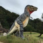 笠岡市にあるカブトガニ博物館は恐竜好きにオススメ!