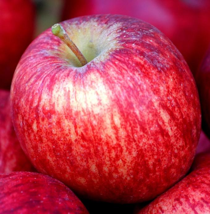 AppleSIM
