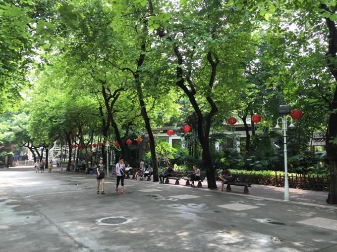 中国 公園