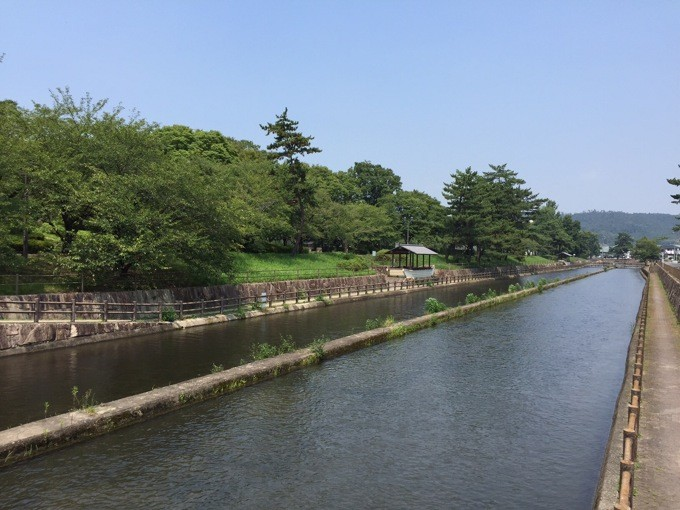 酒津公園 川遊び