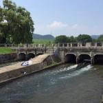 倉敷の酒津公園で川遊びとバーベキューを思い切り楽しんできた!