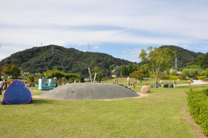 みやま公園 芝生