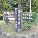 みやま公園は道の駅だけど大型遊具で子供が遊べる最高の場所