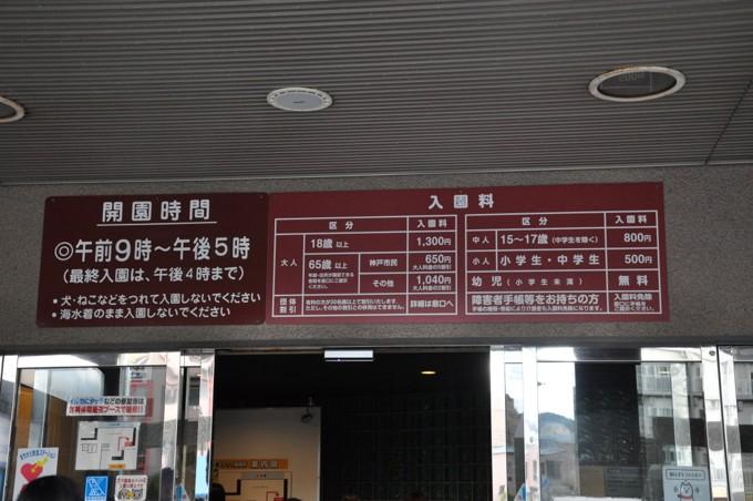 須磨海浜水族館 チケット 料金