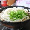 コシの強い細めのうどんなら「うどん 一福」が最強!天ぷらも美味すぎる