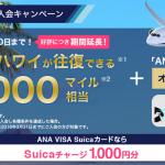 ANA VISAカードのキャンペーンが凄い!入会するなら今がチャンスでしょう