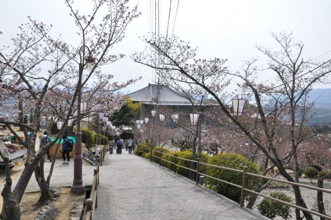 千光寺 展望台 道