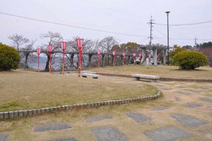 千光寺 桜