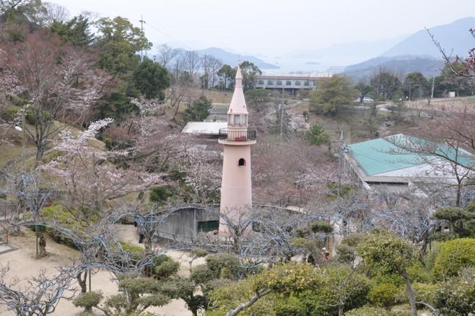 千光寺 猿山
