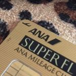【2016年版】ANA VISAワイドゴールドカードを徹底的に検証してみる
