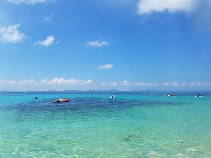大泊ビーチ サンゴ