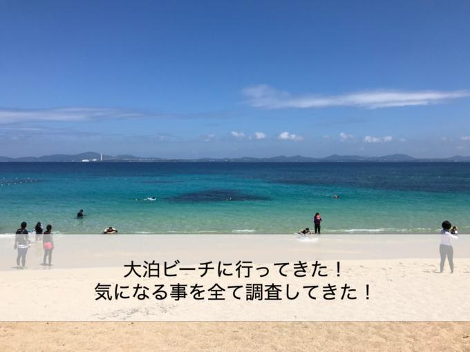 大泊ビーチ 解説